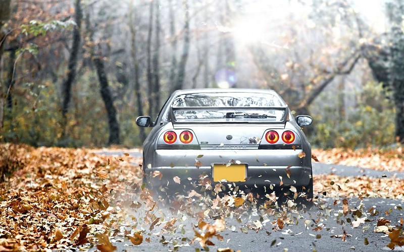 forests-cars-leaves-roads-nissan-skyline-r33-gtr-wallpaper-526021
